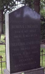 Graf Frederik J. Schutte (1851-1934)